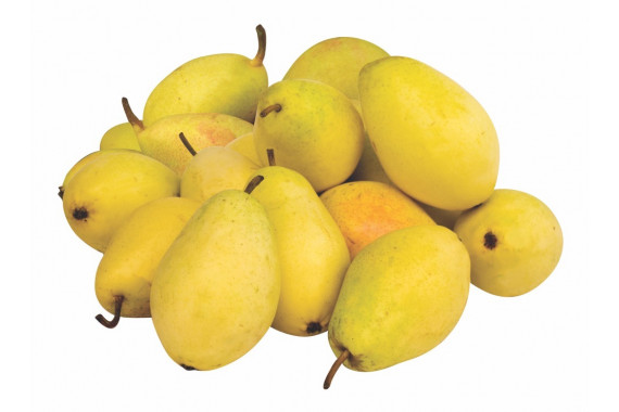 PEARS CHINESE KG
