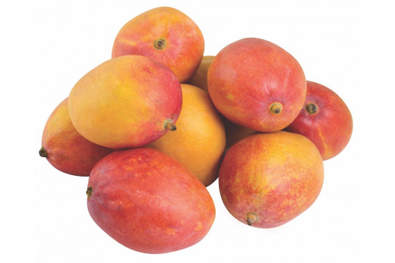 YEMEN MANGO HEART KG - TROPICAL FRUIT - FRESH FRUIT - FRESH FOOD