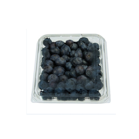 BLUEBERRY PACKET