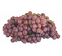 GRAPES RED EGYPT KG