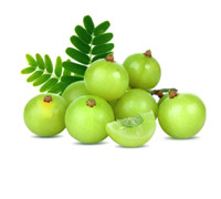 GOOSEBERRY INDIAN KG