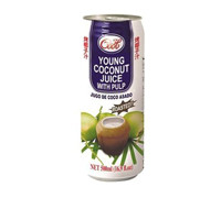 ICE COOL YOUNG COCO JUICE WITH PULP ROASTED 500ML